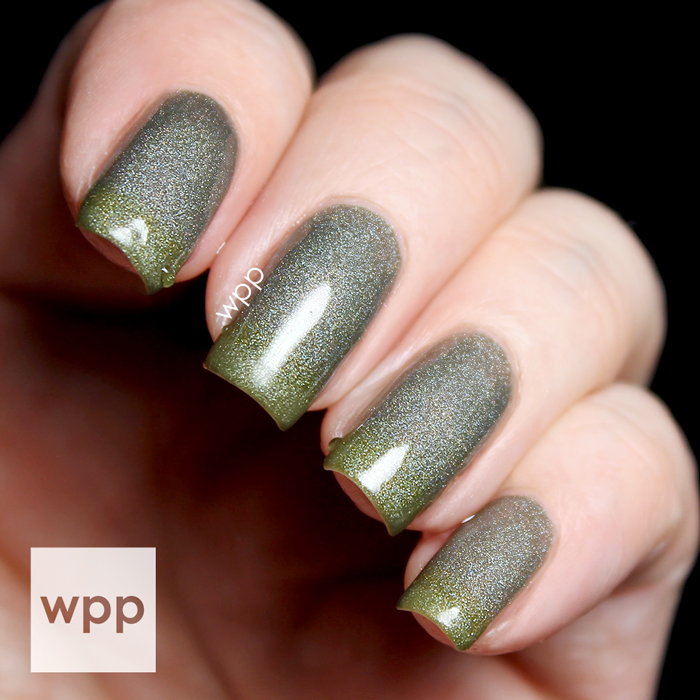 Polished by KPT Fall-O-You