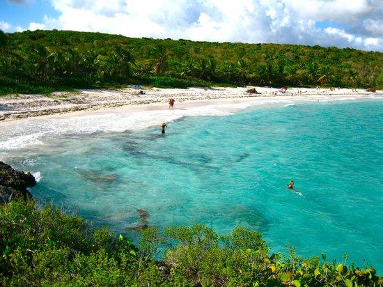La Isla de Vieques es una preciosa isla-municipio que forma parte del archipiélago de Puerto Rico