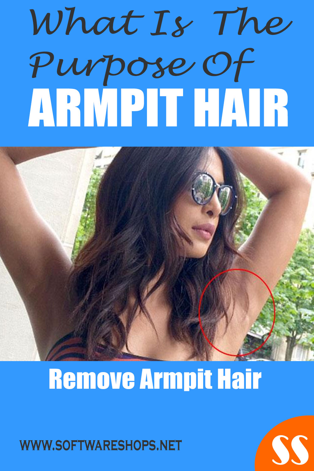 What is the purpose of armpit hair ? Remove armpit hair