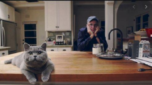 Travis's Cat Huey