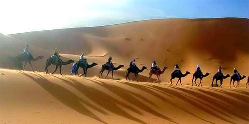 Thing to do in Jaisalmer Rajasthan