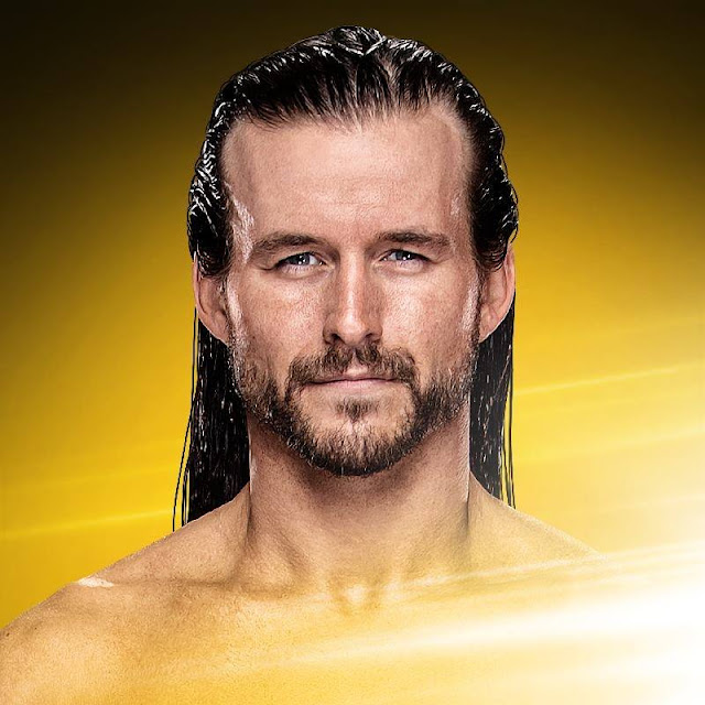 Adam Cole age, wwe, bay bay, nxt, man, shirt, wrestler, roh, bay bay shirt, finisher, t shirt, action figure, bullet club, wiki, biography