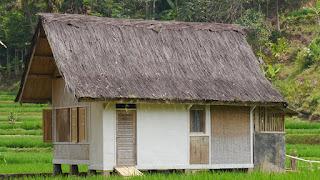 Atap Rumah Bahan Alami