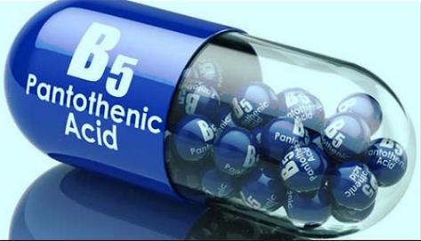 لمحة عامة عن فيتامين B5 واهميته للانسان