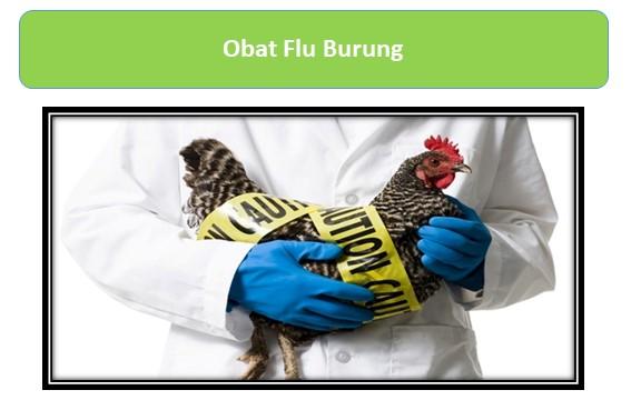 Obat Flu Burung