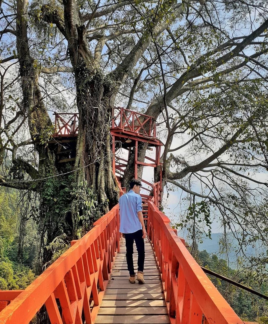 Curug Cierang Jembatan Kayu