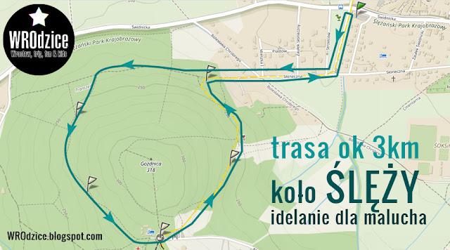 Gozdnica - górka koło Ślęży - łatwy szlak dla dziecka