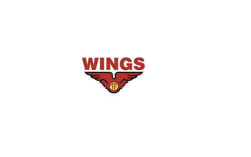 Lowongan Kerja Wings Graduates Trainee Program PT Sayap Mas Utama 4-7 November 2019