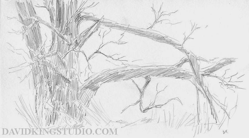 art sketch plein air winter nature tree pencil graphite