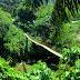 Tangkahan Ecotourism