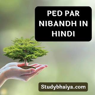 Ped par nibandh in hindi
