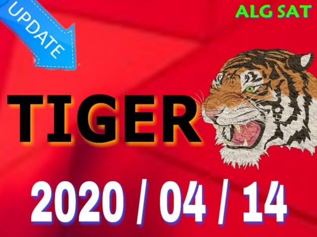 أجهزة تايغر - TIGER - ¨جديد TIGER