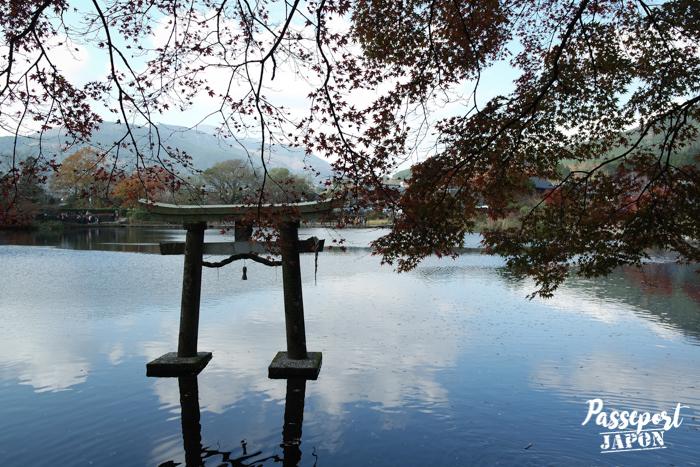 Torii, lac Kinrin, Yufuin