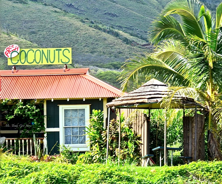 I'd love to make a stop at this Coconut hut in Maui, Hawaii!| Ms. Toody Goo Shoes