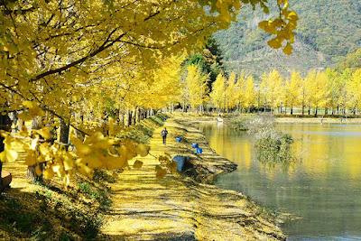 Goesan Mungwang Reservoir