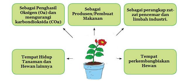 Manfaat Tumbuhan