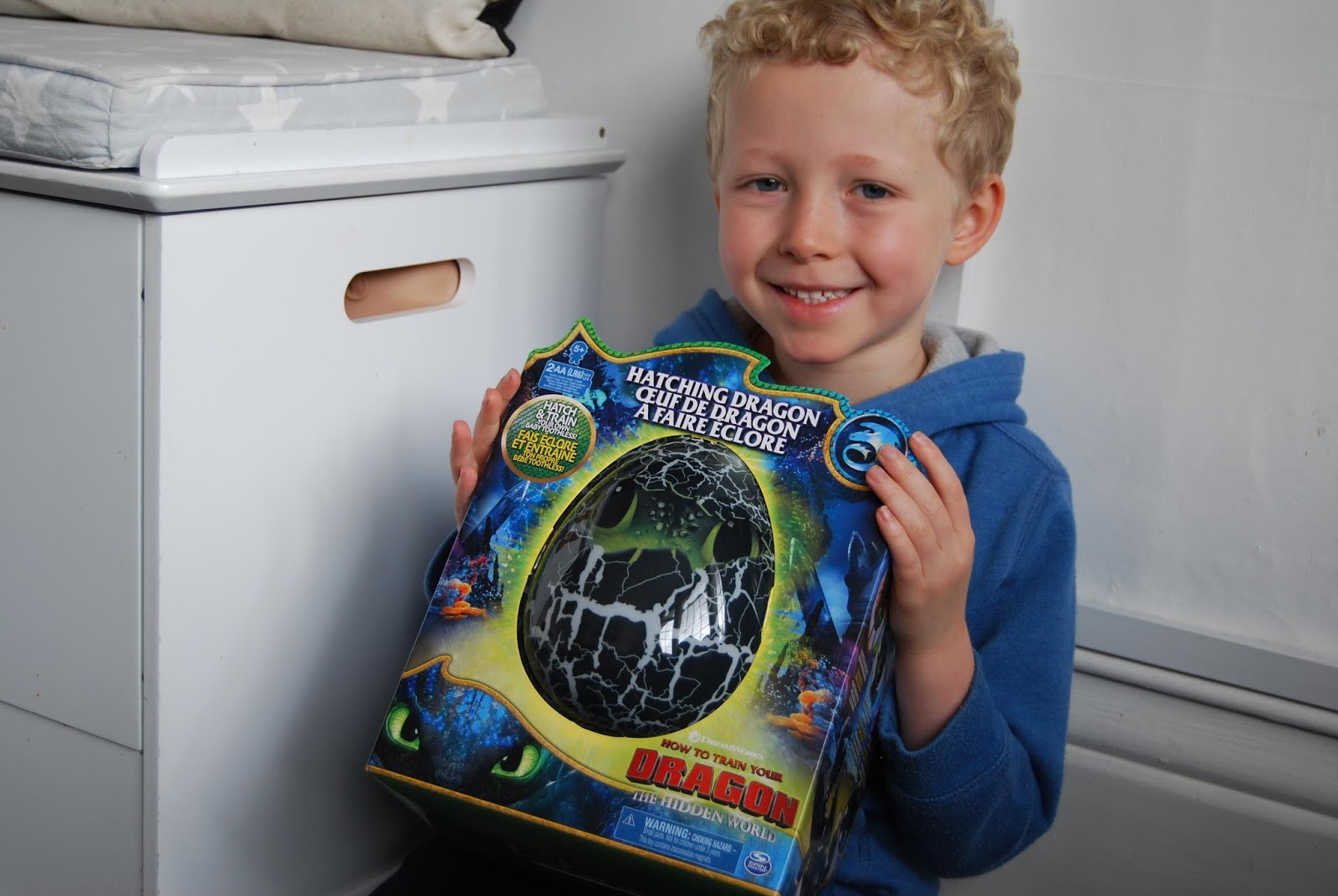 Chic Geek Diary Dreamworks Dragons Hatching Interactive Baby Dragon Toothless Review