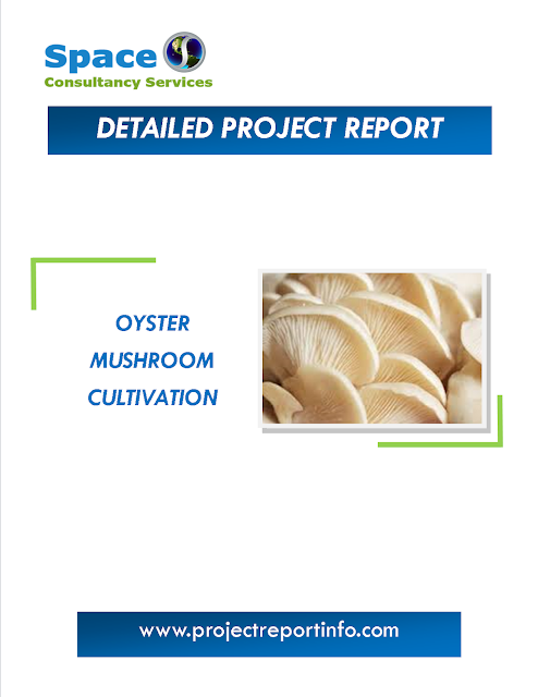 Project Report on Oyster Mushroom Cultivation