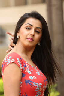 Actress Nikki Galrani Latest Pictures in Floral Short Dress at Malupu Movie Release Date Press Meet  0018.jpg