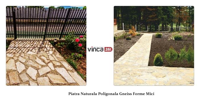 Piatra naturala poligonala Gneiss