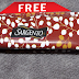 FREE Sargento Snack Cooler