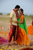 Marala Telupana Priya Working Stills-thumbnail-8
