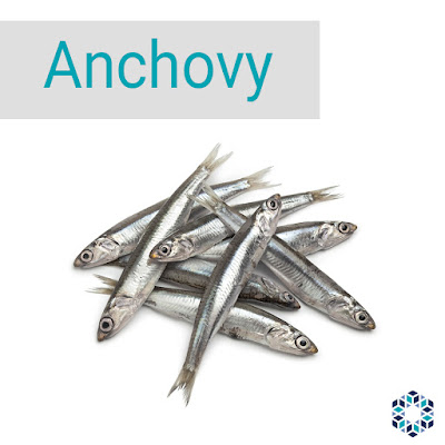 Anchovy is a good source of the omega-3 fatty acids EPA and DHA.