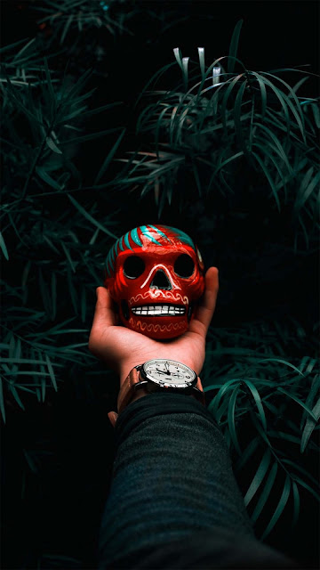 13 Hood, Skull Glow, Red Skull, Blue Skull, Butterfly Skull Wallpapers HD iPhone and Android