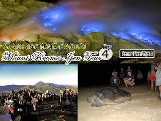 http://www.bromotravelagent.com/2018/08/bromo-ijen-sukamade-beach-tour-package.html