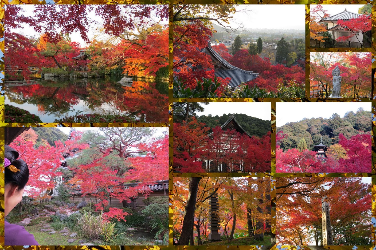 Kyoto, Japan - Autumn Foliage