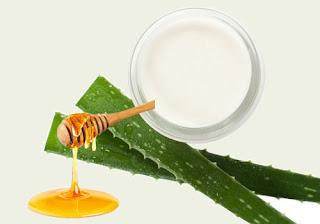 preserve aloe vera with honey