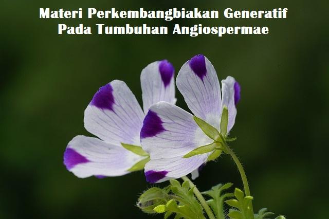 Materi Perkembangbiakan Generatif Pada Tumbuhan Angiospermae