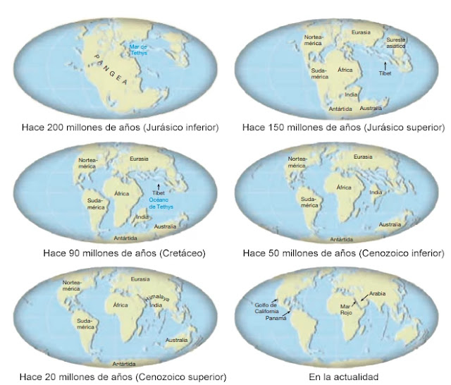 Proceso de fragmentación del súper continente Pangea