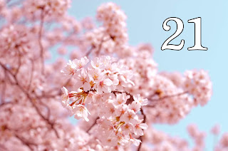 dzień urodzenia 21, znaczenie, numerologia, horoskop, 21