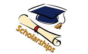 SRH University of Popular Arts Undergraduate Scholarship