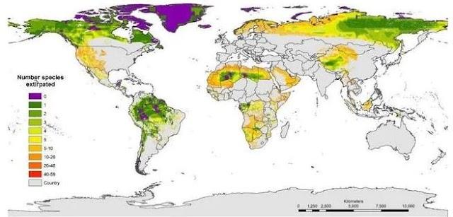 Did We Destroy Earth?