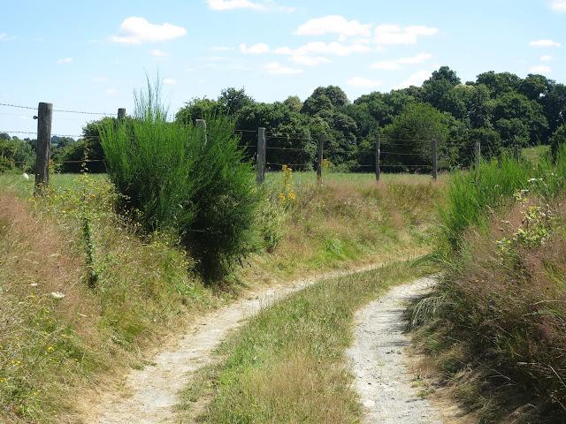 chemin de mayenne-papillottes.blogspot.fr-image-JPEG