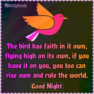 English good night quote