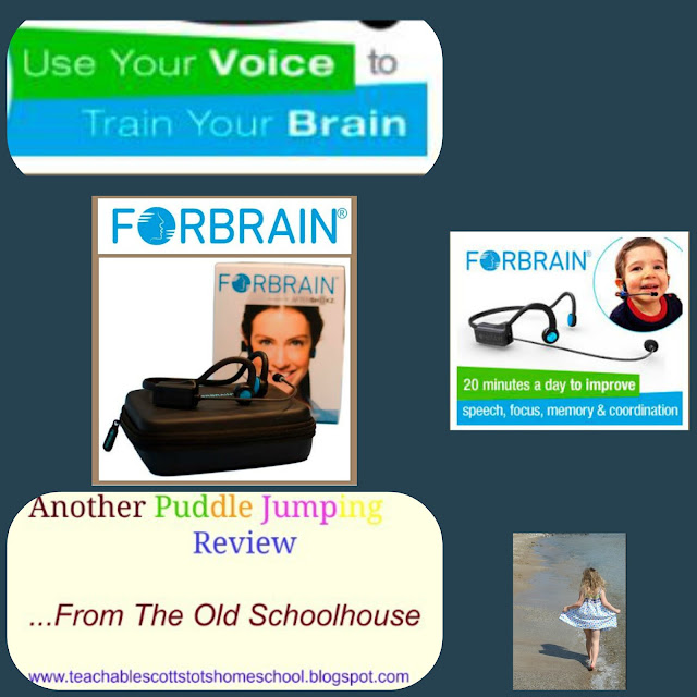 #hsreviews , #forbrain , #ADD , #ADHD , #sensoryintegration , Forbrain, technology for speech and language difficulties, brain stimulation, auditory processing disorder, reading difficulties, ADD ; ADHD, improve speech, improve attention, auditory feedback loop, bone conduction headset, sensory integration