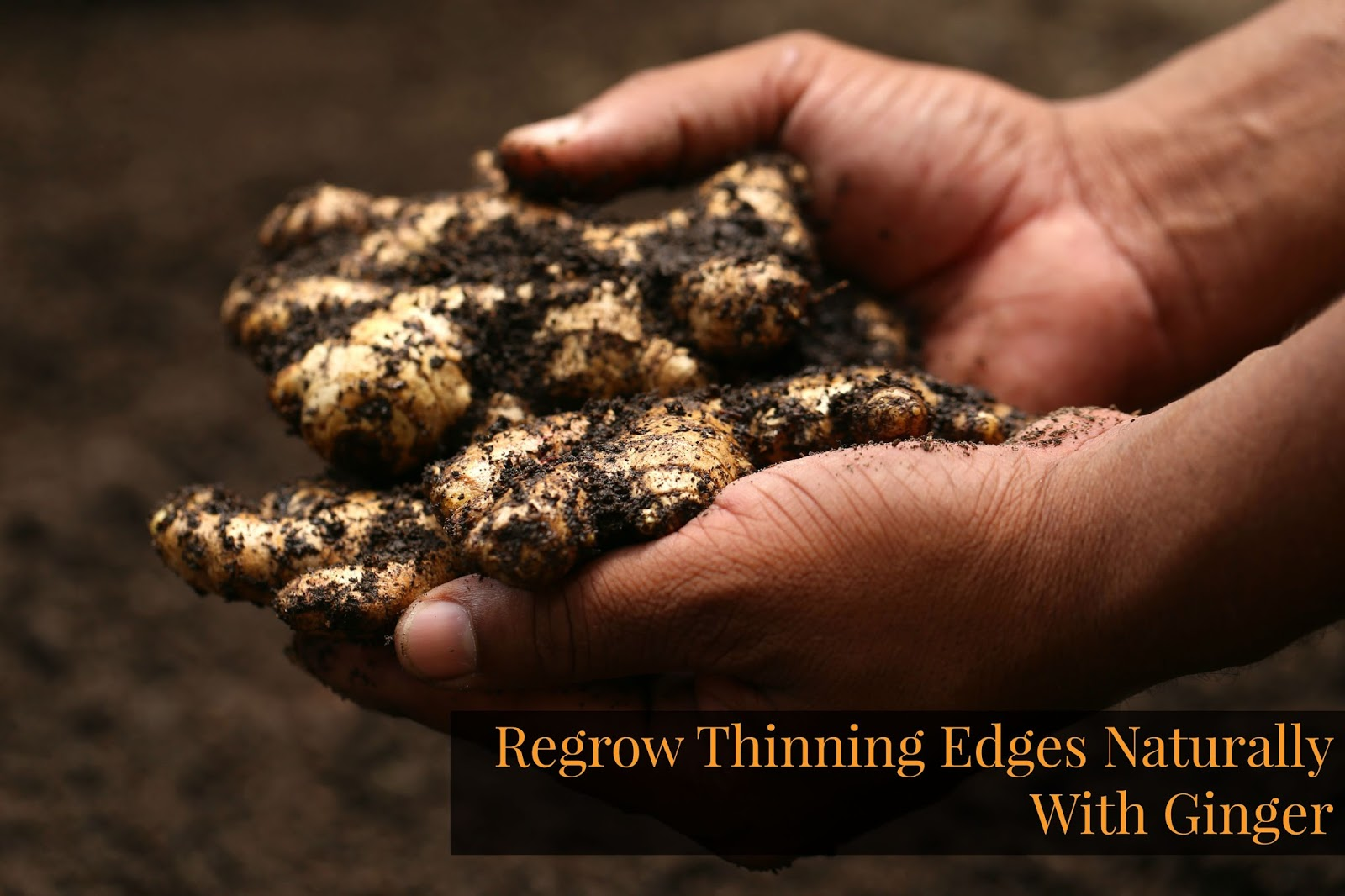 Regrow Thinning Edges Naturally With Ginger