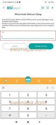 Input Pin BSI Mobile