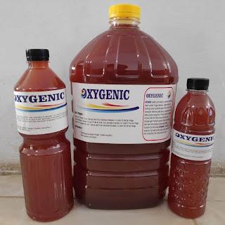 Bakteri Starter Oxygenic
