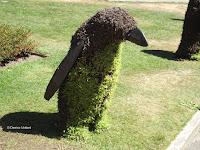 A sympathetic penguin, Festival of Flowers - Christchurch Botanic Gardens, New Zealand