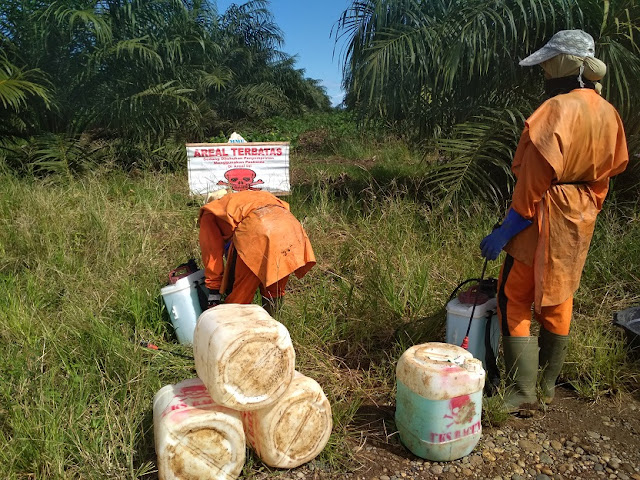 Indonesia: Violence against Women Workers in Oil Palm Plantations