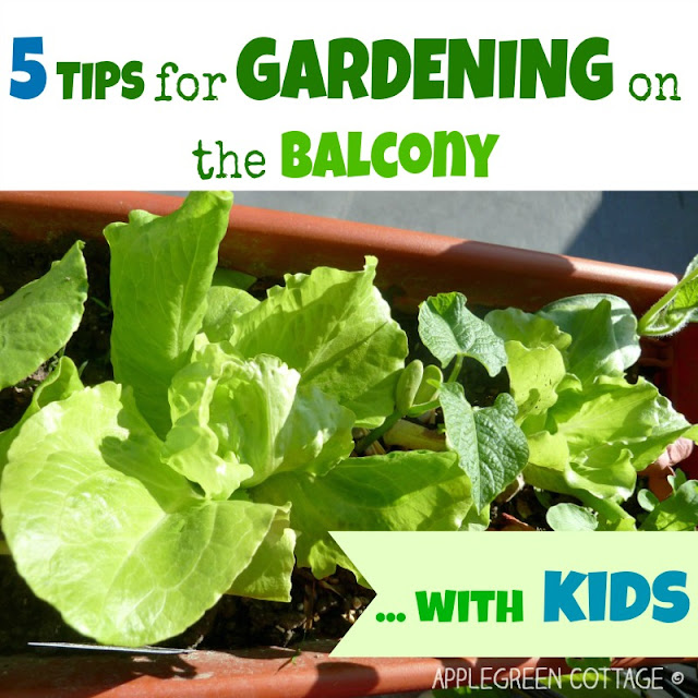 tips for gardening on the balcony with kids