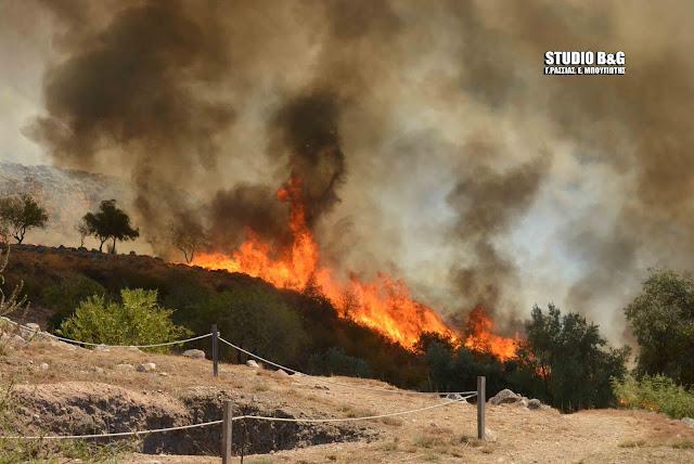 Η άποψη του Συνδέσμου Φιλολόγων Αργολίδας για την πυρκαγιά στις Μυκήνες