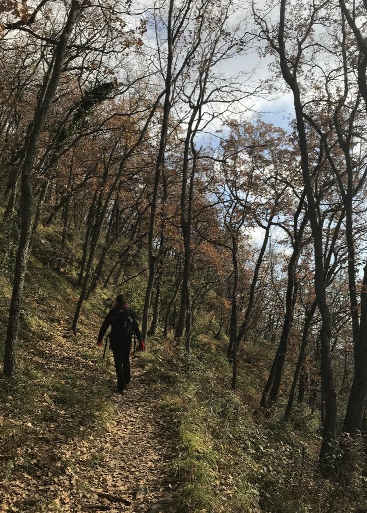 Circuit du Malvan trail near Vence