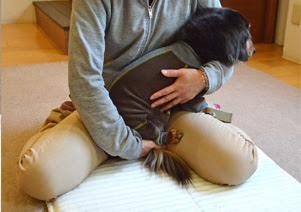 tratamento de cães com mobilidade reduzida