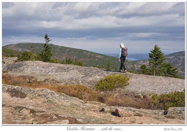 Cadillac Mountain: ... with the views...