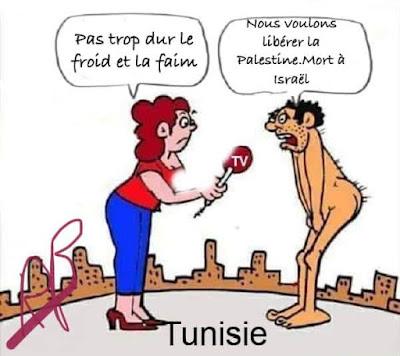 TEMPS et CONTRETEMPS: Quel avenir pour la Tunisie après les ...